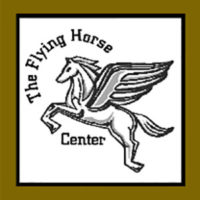 The Flying Horse Center